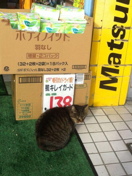 今はもうない木更津駅東口のマツキヨ前で